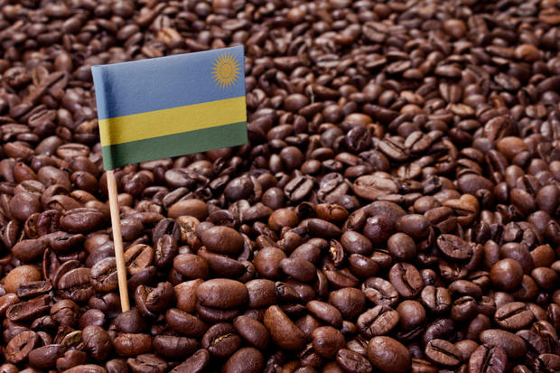 Flag of Rwanda sticking in coffee beans.(series)