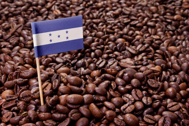 Flag of Honduras sticking in coffee beans.(series)