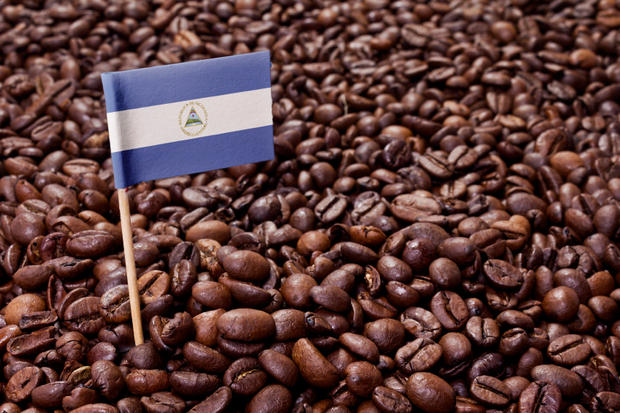 Flag of Nicaragua sticking in coffee beans.(series)
