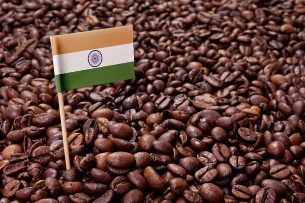 Flag of India sticking in coffee beans.(series)